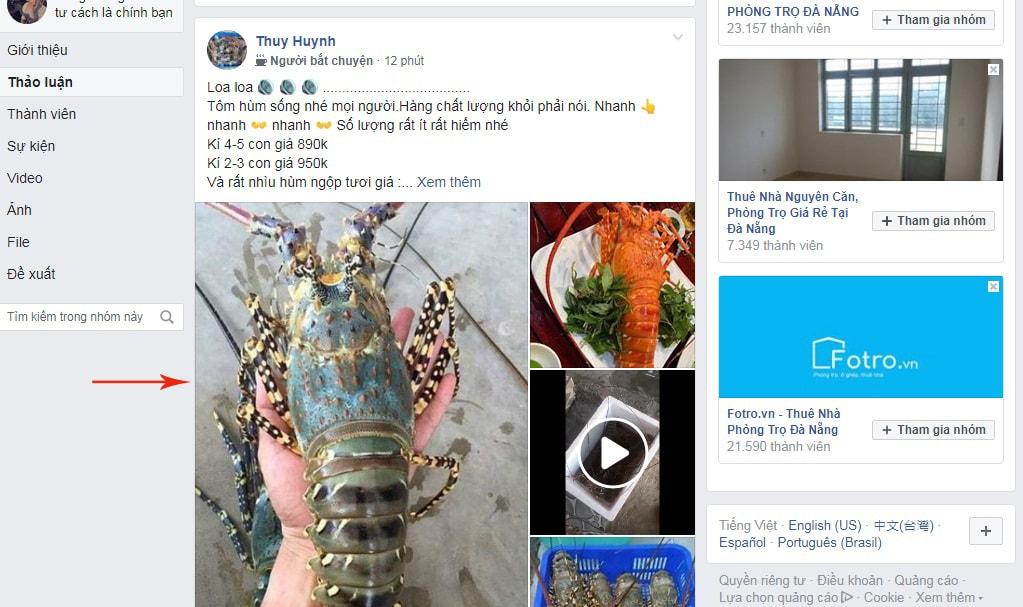 chạy quảng cáo trên facebook miễn phí